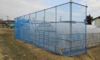 農業用ビニールハウス(風避け囲い)
